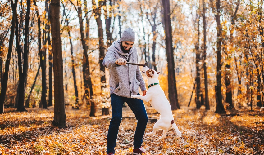 Smiling man plays with his dog in the forest on a beautiful fall day.